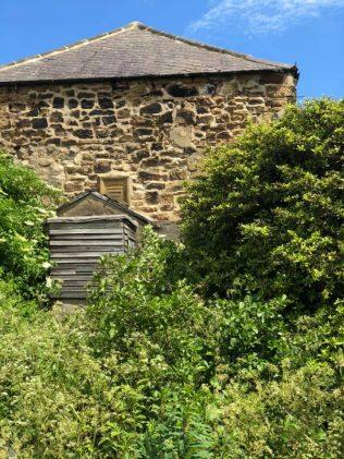 1868 West Allotment Primitive Methodist chapel | John Walley June 2021