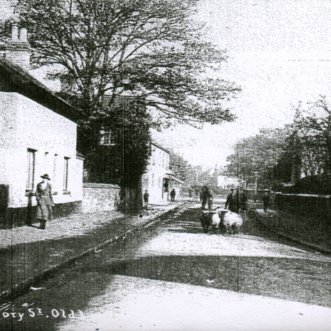This white house on the left was 26 Gregory Street, Lenton, Henry's birthplace, and his father's birthplace, lived in by Roe's from 1760 up to at least 1914. | J. Spree