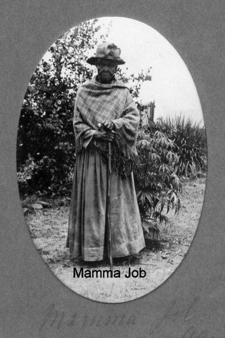 Elizabeth 'Mamma' Job