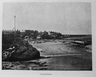 Petticrew, Alexander (1819-1900)