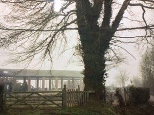 THe Oak, Broomhall | Rev. David Leese